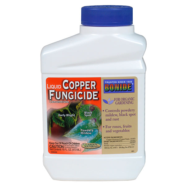 Best Natural Fungicides